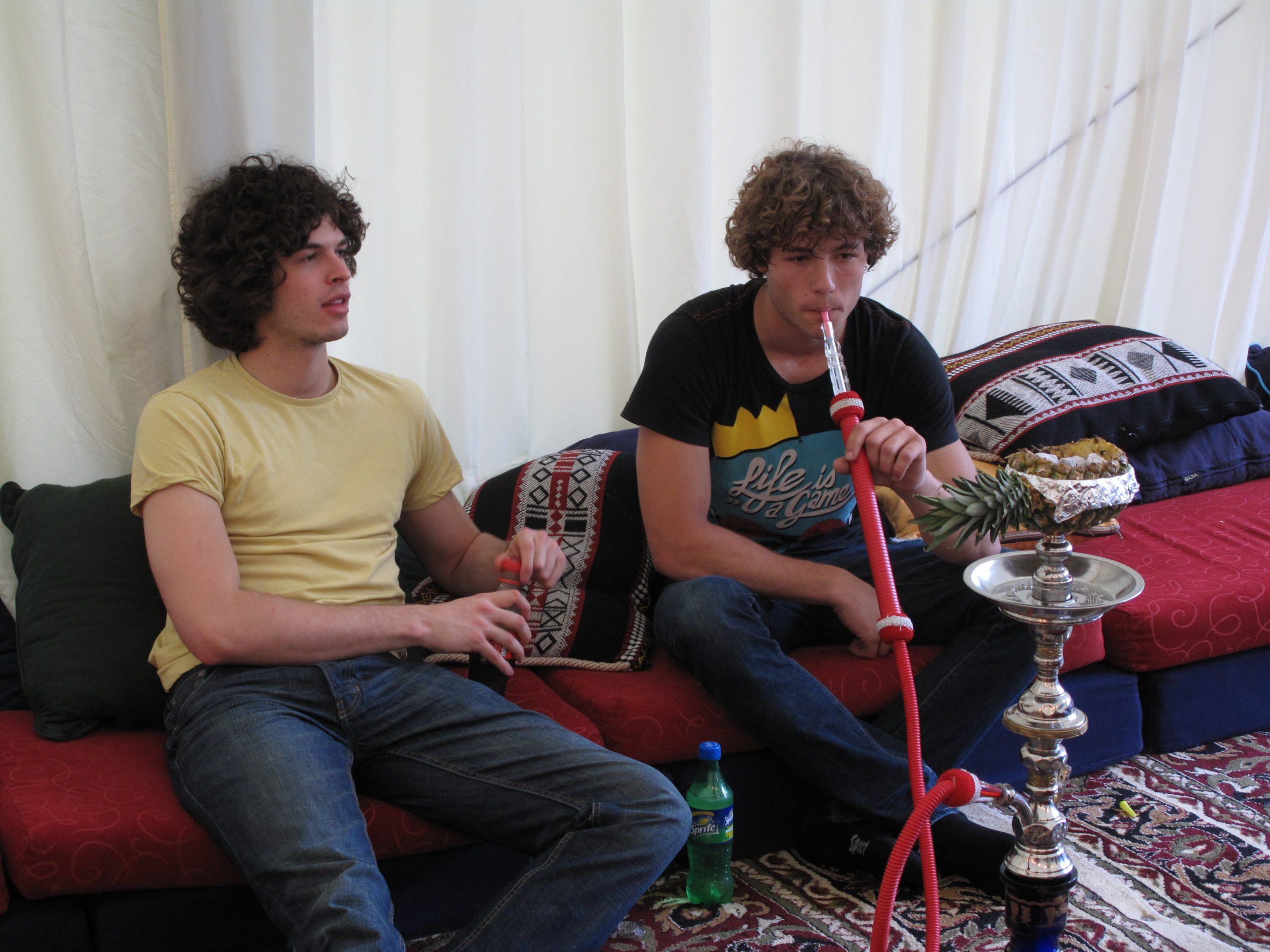 FRUIT SHISHA PIPE HIRE FOR PARTIES AND EVENTS IN LONDON, CAMBRIDGE AND PARTS OF UK